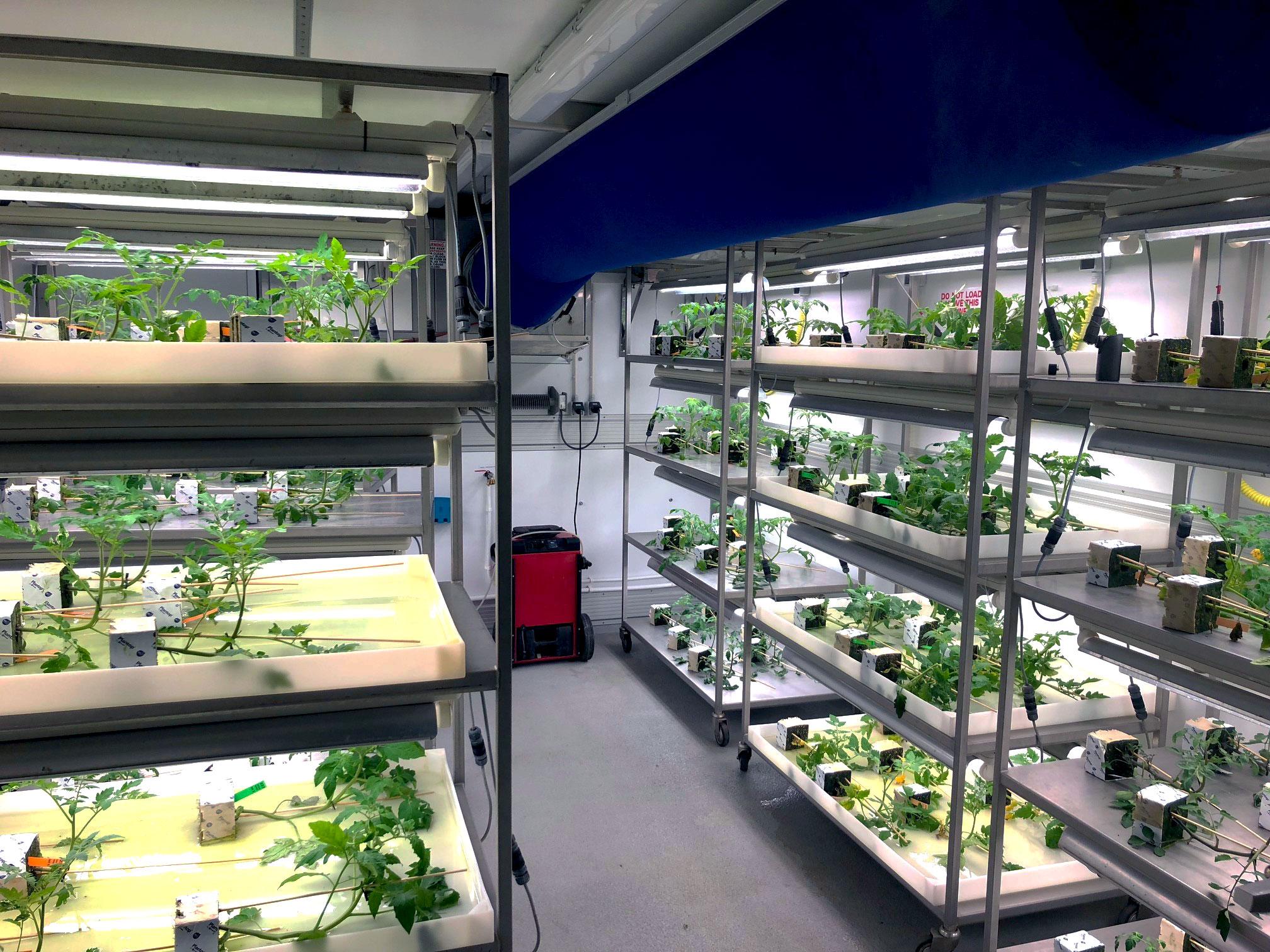 Dawsongroup TCS, Vertical Farming, Portable Production Room Facilities